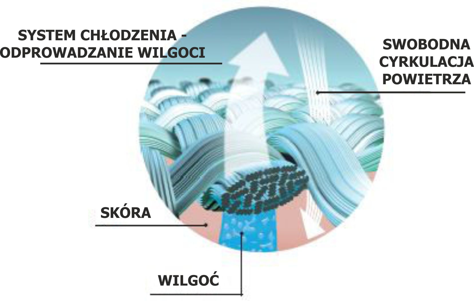 System schemat